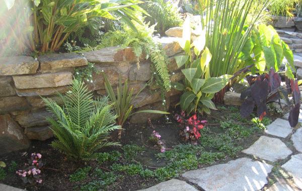 Award Winning Vontz Residence (San Luis Obispo, CA)